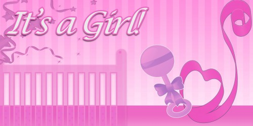 It's A Girl Crib Banner