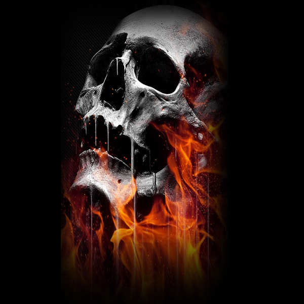 Flaming Skulls - Gun Safe Decal