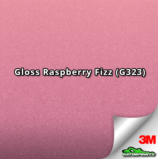 Gloss Raspberry Fizz (G323)